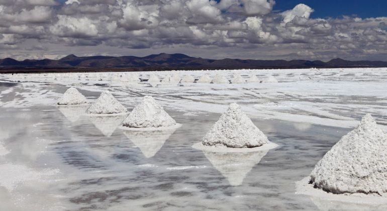 Patagonia.net Litio: el tesoro que ocultan los salares.