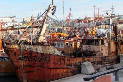 barcos mar del plata